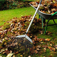 Garden Clearance Maida Vale