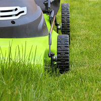 Lawn Mowing Maida Vale