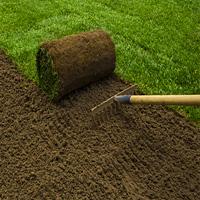 Lawn Repair Maida Vale